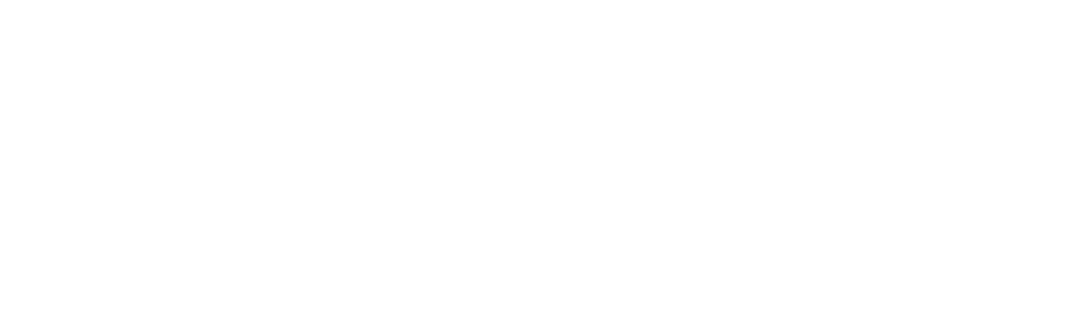 National Women's Liberal Commission